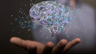 Interoception & the Link Between Mind, Brain & Body